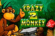 Аппарат Crazy Monkey 2 в зале Вулкан